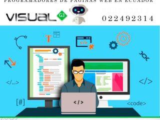 programadores de paginas web en ecuador